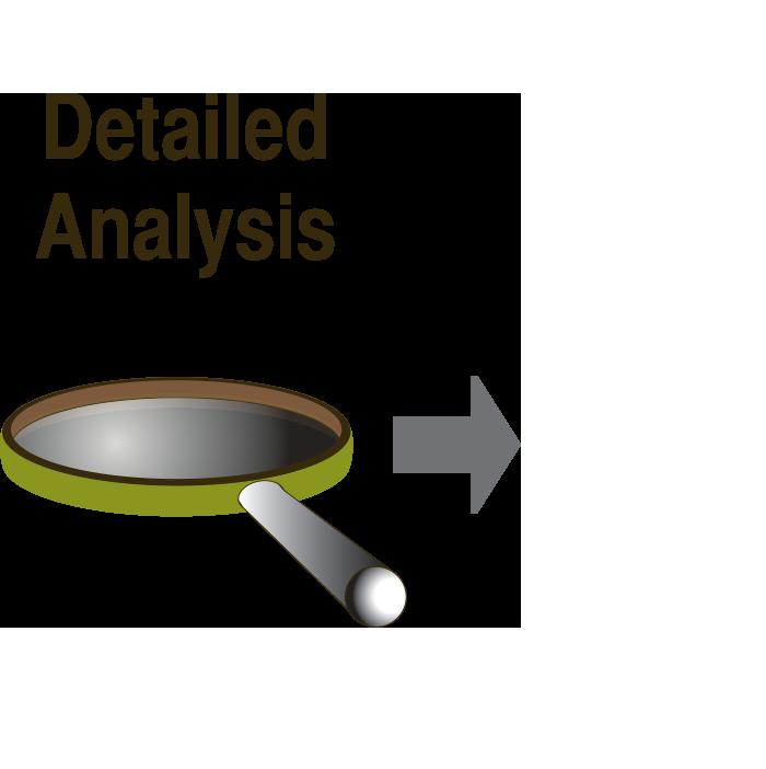 Detailed Analysis Icon