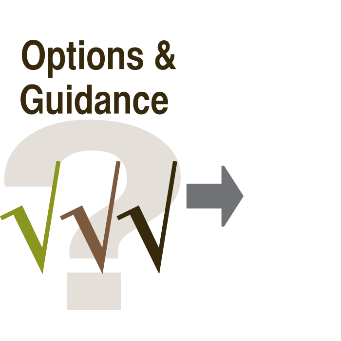 Options & Guidance Icon